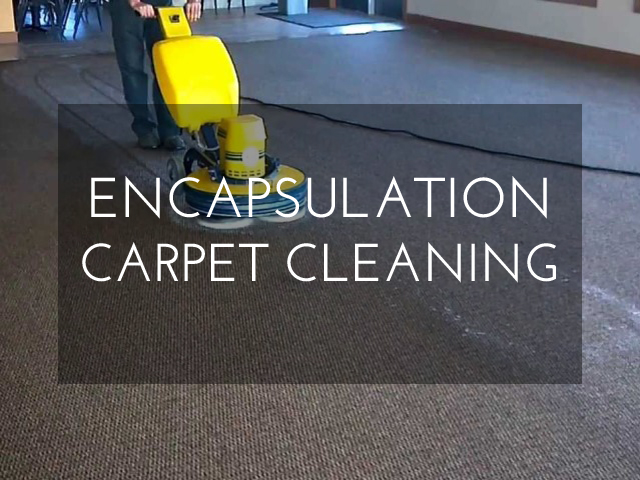 Encapsulation Carpet Cleaning in Montreal